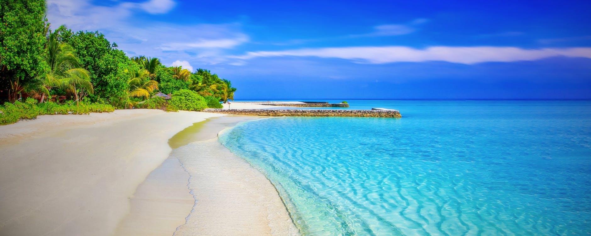 Start Saving Money Today - scenic view of beach