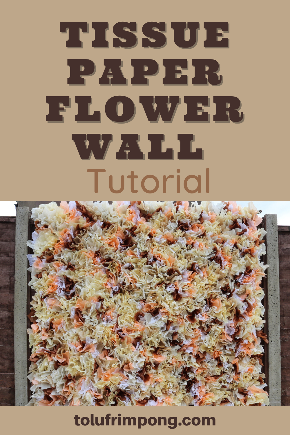 Tissue Paper Flower Wall Photo Backdrop Simple Diy Tutorial